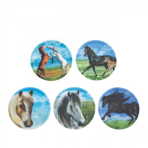 Kletties-Set Pferde