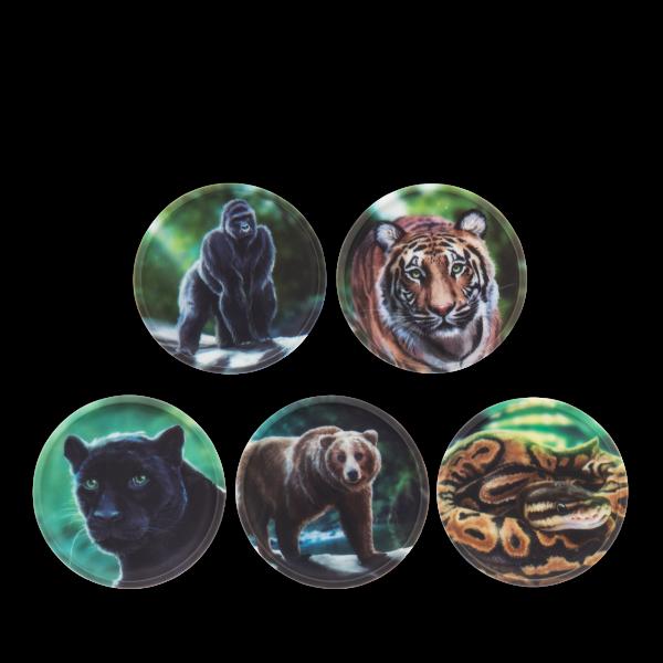 Kletties-Set Dschungel