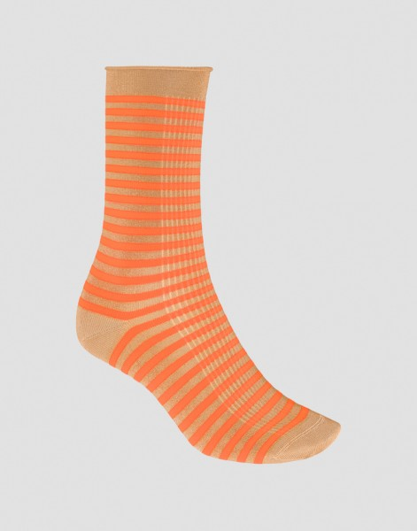 Socke Yolo
